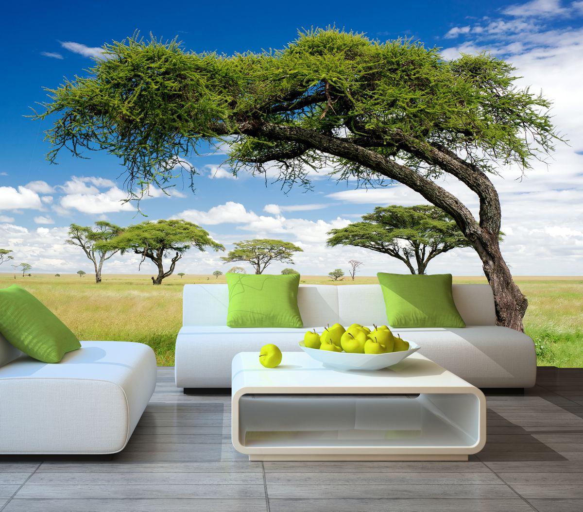 fototapeta krajobraz afryki