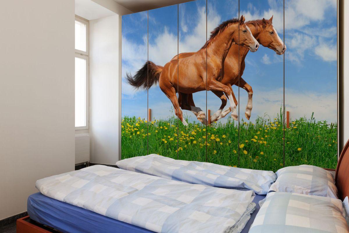 fototapeta dwa galopujące konie