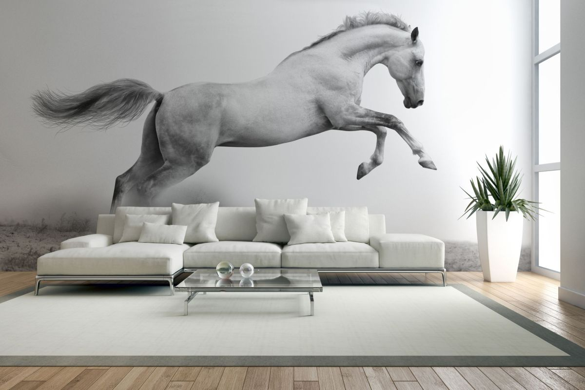 fototapeta dziki koń