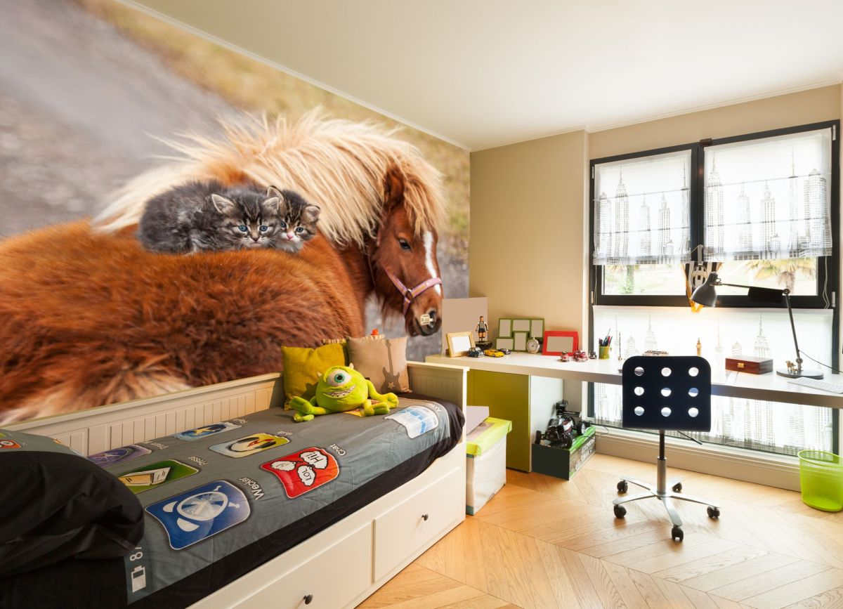 fototapeta kotki na koniu